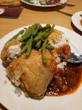Köstlicher gebratenes Hühnerreis Stockbild