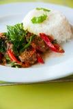Köstlicher heißer Reis mit gebratenem Schweinefleisch Stockbilder