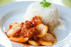 Köstlicher heißer Reis mit gebratenem Schweinefleisch, Zwiebel Lizenzfreie Stockbilder