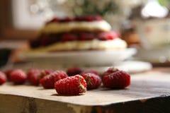 Köstlicher Kuchen mit Vanillepudding und frischer Himbeere lizenzfreie stockfotografie