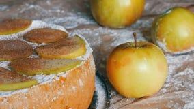 Köstlicher Lebkuchenapfelkuchen Charlotte Traditioneller Zimt und Apfelkuchen pulverisierten reich Puderzucker stock video