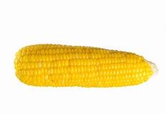 Köstlicher Mais Lizenzfreie Stockfotos