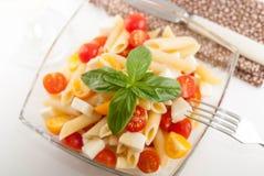 Köstlicher Nudelsalat mit frischen mozarella und Kirschtomaten, Basilikum Lizenzfreie Stockfotografie