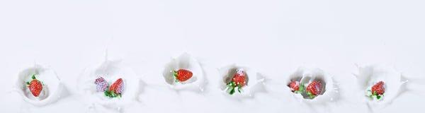 Köstlicher Panoramablick von den Erdbeeren, die unten in Milch sinken lizenzfreie stockbilder