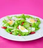 Köstlicher Salat Lizenzfreie Stockfotos