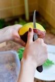 Köstliches Lebensmittel mit ihren eigenen Händen Lizenzfreie Stockbilder