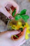 Köstliches Lebensmittel mit ihren eigenen Händen Lizenzfreie Stockfotos