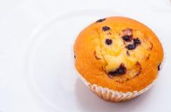 Köstliches Muffin der Schwarzen Johannisbeere Stockfotos