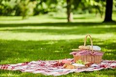 Köstliches Picknick verbreitet mit neuem Lebensmittel lizenzfreie stockbilder