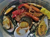 Kött eller foods, som har bränts, kunde orsaka cancer grillad köttorsakscancer cancer för köttgallerorsak royaltyfri fotografi
