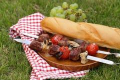 Kött grillade på brandsteknålarna (shashlik) med tomater Royaltyfri Fotografi