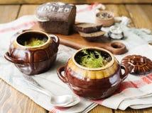 Kött i Clay Pot Royaltyfri Fotografi
