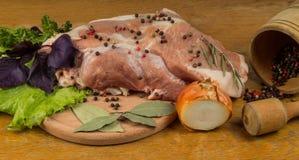 Kött, kryddor och örter Royaltyfri Bild