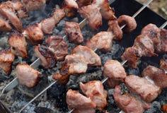 Kött mat, grillfesten, gallret, griskött, grillade, grillar och att laga mat, shashlik, kebaben, brand, mål, steknålen, matställe arkivfoton