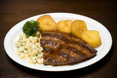 Kött med sidodisk royaltyfri foto