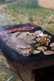 Kött- och grönsakgrillfest i natur Arkivfoton