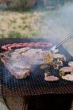 Kött- och grönsakgrillfest i natur Royaltyfri Bild