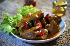 Kött och kryddor Fotografering för Bildbyråer
