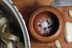 Kött och kryddor Royaltyfria Bilder