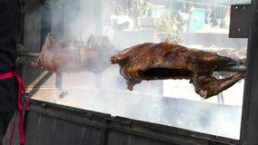 Kött på spottad lager videofilmer