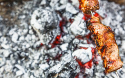 Kött planteras på en steknål som grillas på kol Royaltyfri Fotografi