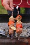 Kött som grillas på brandsteknålarna (shashlik) Royaltyfri Foto