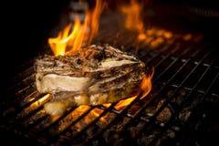 Kött som lagas mat till branden Fotografering för Bildbyråer