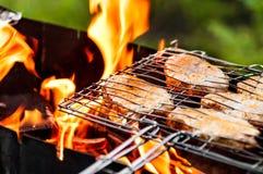 Kött som stekas på gallret Fotografering för Bildbyråer