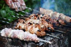 kött stek, grillfest Royaltyfria Foton