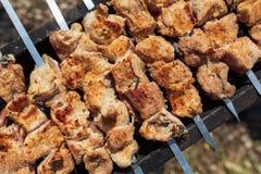 Köttet stekas på pinnar på kol royaltyfri bild