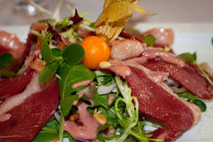 Köttläckerhet med uddekrusbäret Arkivfoto