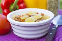 Köttragu med veggies i bunke Royaltyfria Foton