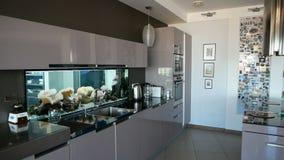 Küche der modernen Wohnung mit schönem Aquarium mit bunten Fischen stock video footage