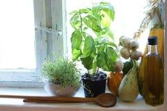 Küchefenster des alten Landes mit Kräutern stockfoto