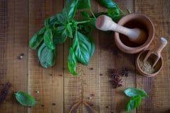 Küchengeräte für Gewürze Frischer Basilikum und Gewürze auf dem Tisch lizenzfreie stockfotografie