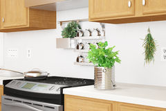 Kücheninnennahaufnahme mit Kräutern Lizenzfreies Stockfoto