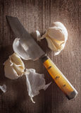 Küchenmesser mit Knoblauch Stockbilder