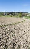 Kühe, die auf Sommerweiden in der Schweiz weiden lassen Lizenzfreies Stockfoto