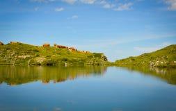 Kühe durch den See mit einer perfekten Reflexion Lizenzfreies Stockfoto