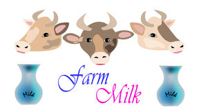 Kühe mit Milchkrügen Stockbilder