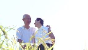 Kühle asiatische ältere Videopaare, die Sonnenschein auf dem Naturwiesengebiet auf weißen Hemden genießen stock footage