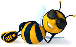 Kühle Biene Stockbild