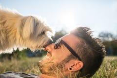 Kühler Hund, der mit seinem Eigentümer spielt Lizenzfreies Stockfoto