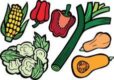 Kühler Kopfsalat-Auswahl-Satz Lizenzfreies Stockfoto