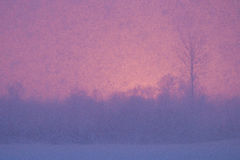 Kühles Wetter in Estland Lizenzfreies Stockfoto