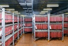 Kühlhaus für die Speicherung des Fleisches und der Wurstwaren Lizenzfreies Stockfoto