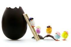 Küken, die für das Ostern säubern stockbilder