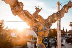 Künstlerisch verzierter Baum mit farbiger Wolle, Baum mit Sturm stockfotografie