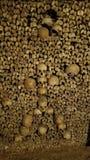 Künstlerische Anordnung für Schädel in den Katakomben von Paris stockfotografie