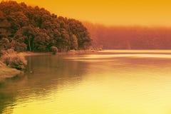 Künstlerische bunte Landschaft von Waldsee stockbilder